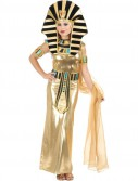 Egyptian Queen Nefertiti Adult Costume