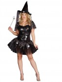 Starry Night Witch Adult Plus Costume