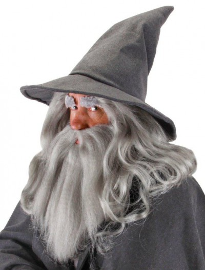 Lord Of The Rings Gandalf Hat (Adult)