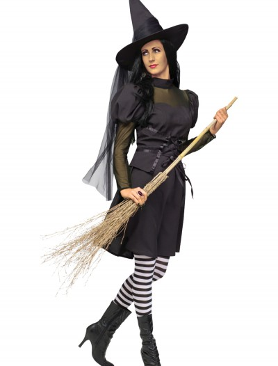 Adult Ms. Witch Costume