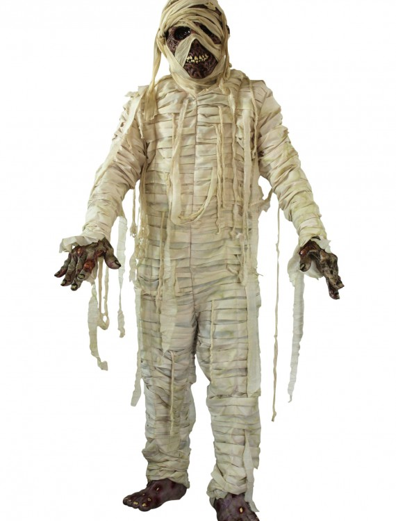 Adult Mummified Costume