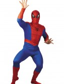 Adult Spider-Man Costume