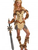 Adult Viking Princess Costume