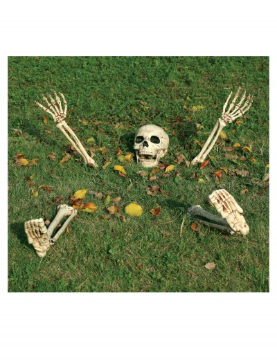 5 Piece Buried Alive Skeleton Kit