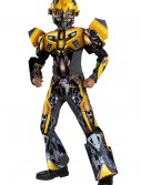 Child 3D Bumblebee Costume