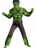 Child Avengers Hulk Muscle Costume