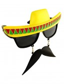 Fiesta Sunglasses