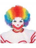 Kids Multi Color Clown Wig