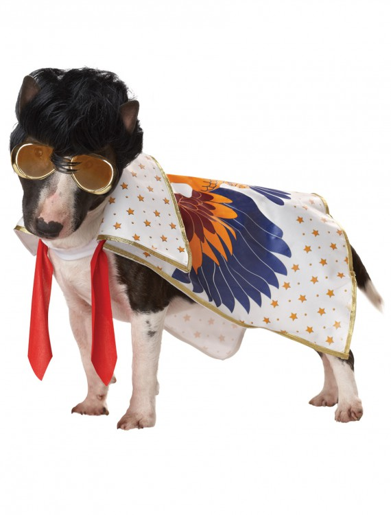 Nothin But A Hound Dog Costume