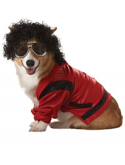 Pet Pop King Costume