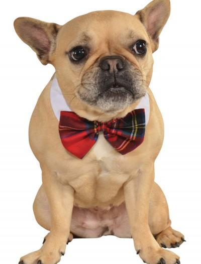 Plaid Bow Tie Pet Costume