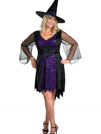 Plus Size Brilliant Witch Costume
