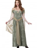 Queen Guinevere Costume