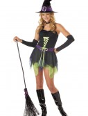 Teen Whimsical Witch Costume