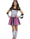 Teen Zebra Costume