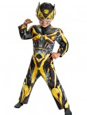 Toddler Transformers 4 Muscle Chest Bumble Bee Costume