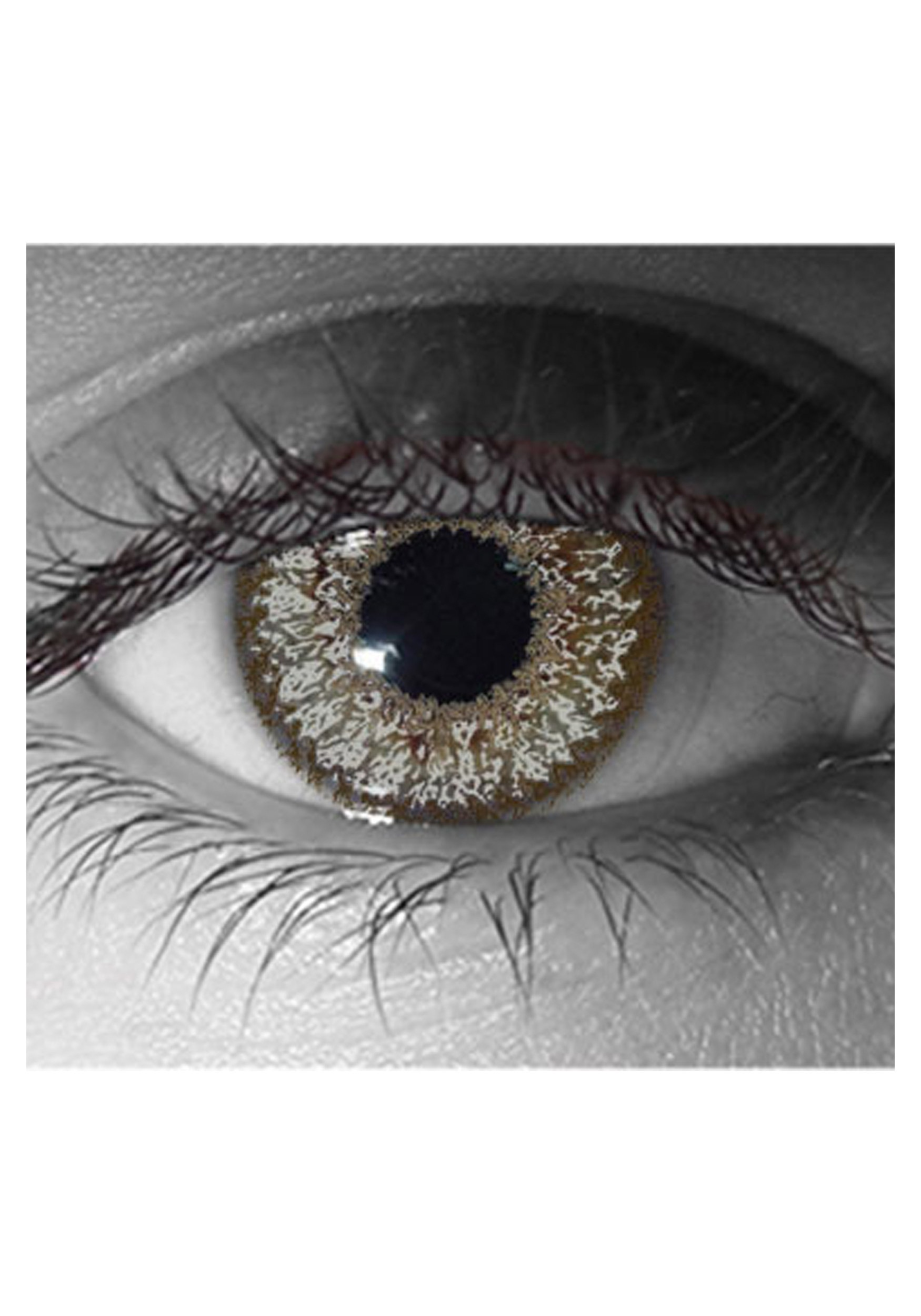 Venus Slate Gray Contact Lenses