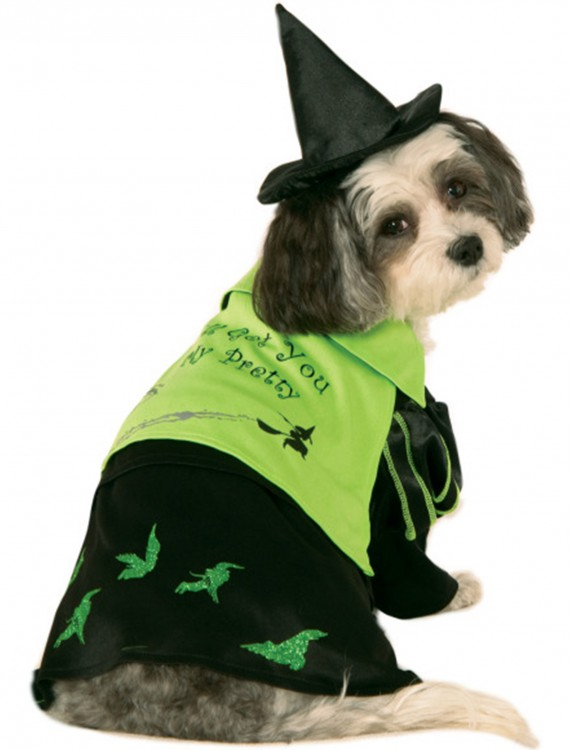Wicked Witch of the West Pet Costume
