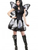 Womens Twilight Butterfly Costume