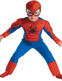 Spider-Man Muscle Toddler Costume