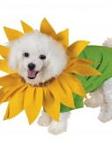 Sunflower Pet Costume