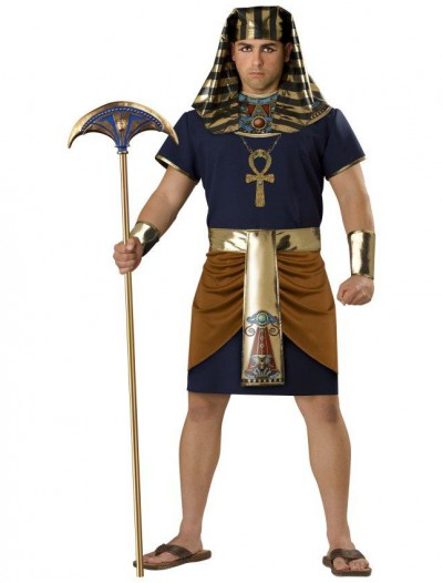 Egyptian Man Plus Adult Costume