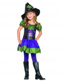 Hocus Pocus Witch Toddler / Child Costume