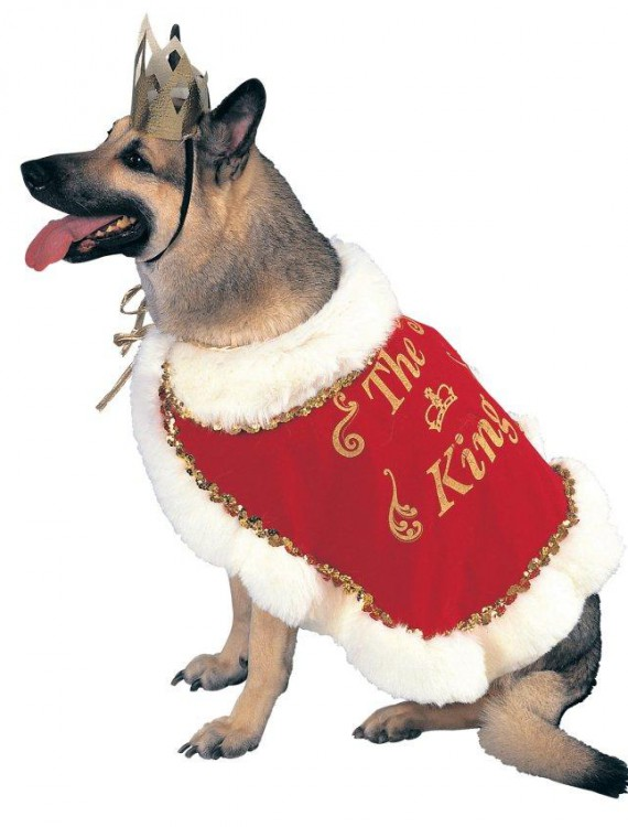 King Pet Costume