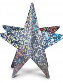 Silver 3D Prismatic Star Centerpiece