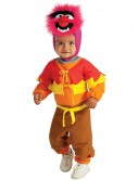 The Muppets Animal Infant / Toddler Costume