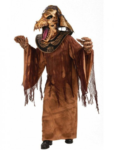 Mummy Warrior Adult Costume
