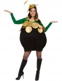 Pot-O-Gold Adult Costume