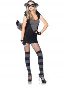 Risky Raccoon Adult Costume