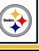 NFL Pittsburg Steelers Lunch Napkins (16 count)