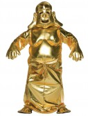 Golden Buddha Adult Costume