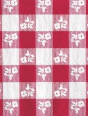 Red Gingham Lunch Napkins (50)