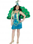 Peacock Adult Plus Costume