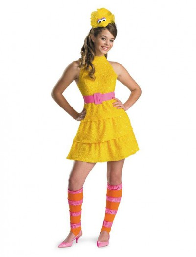 Big Bird Tween Costume