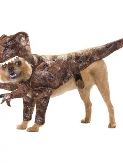Animal Planet Raptor Pet Costume