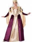 Renaissance Princess Womens Plus Size Costume