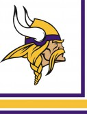 NFL Minnesota Vikings Lunch Napkins (16 count)