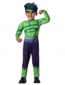 Avengers Assemble Hulk Toddler Costume