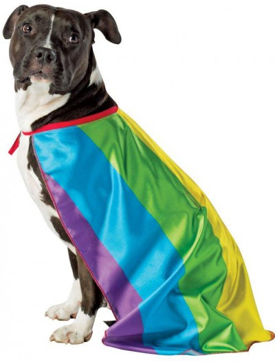 Rainbow Flag Cape Pet Costume